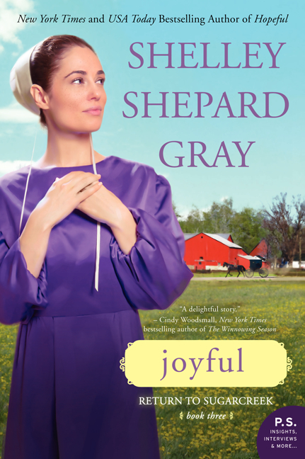 Amish Fiction Faithful Acres Body Soul Spirit